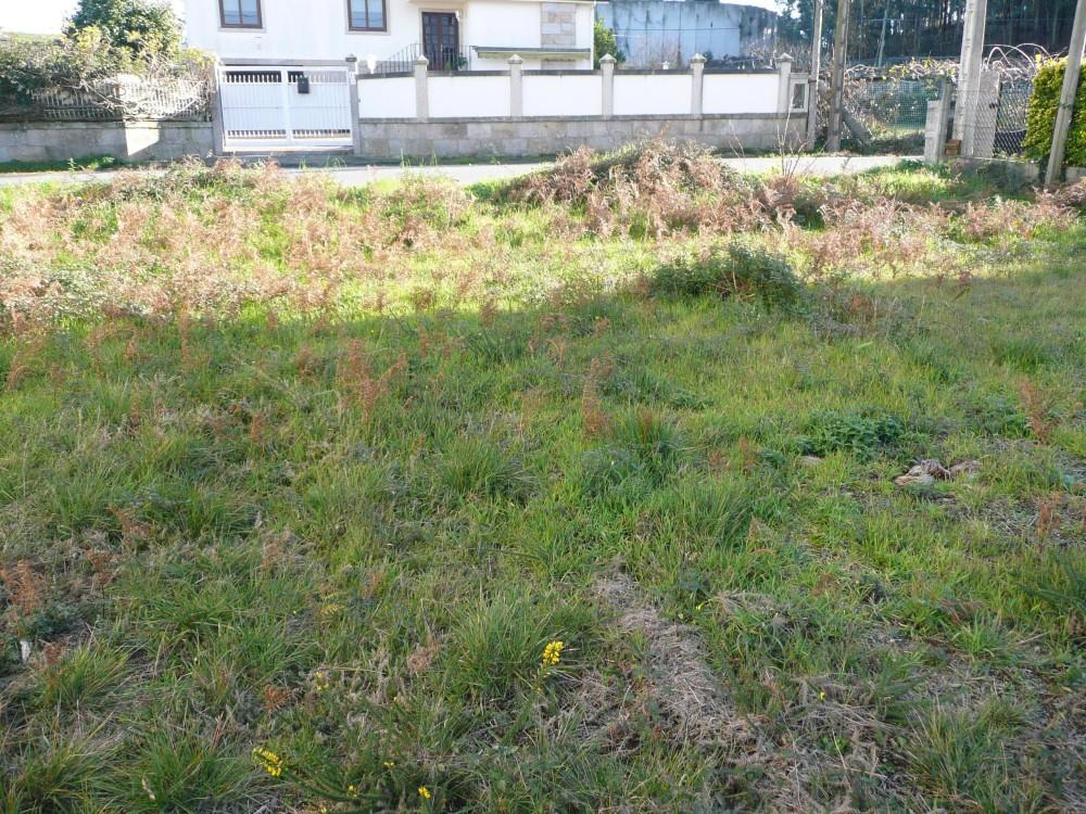 Inmobiliaria Juan Rey 7